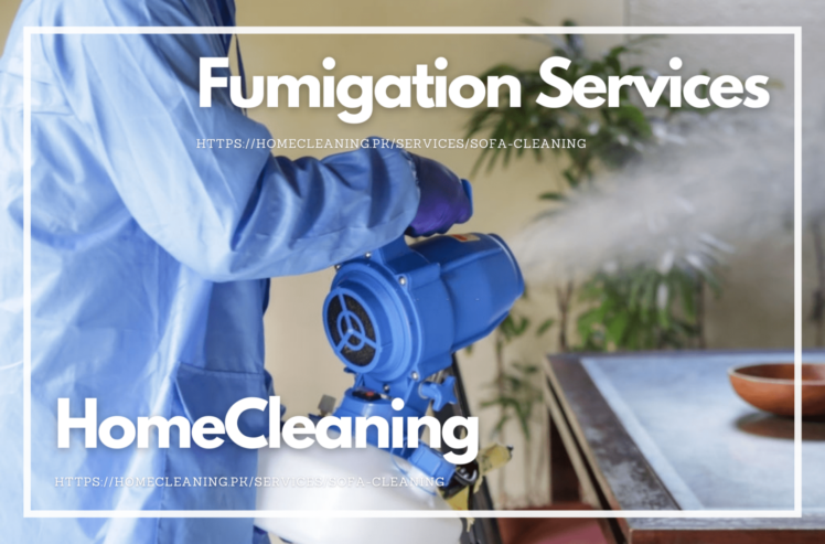 Fumigation-Services-In-Islamabad